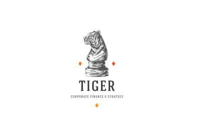 Tiger Corporate Finance & Strategy