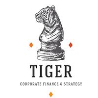 Venture capital partner